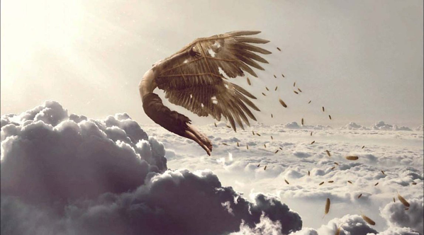 Don't be like Icarus. Understand why customers churn.