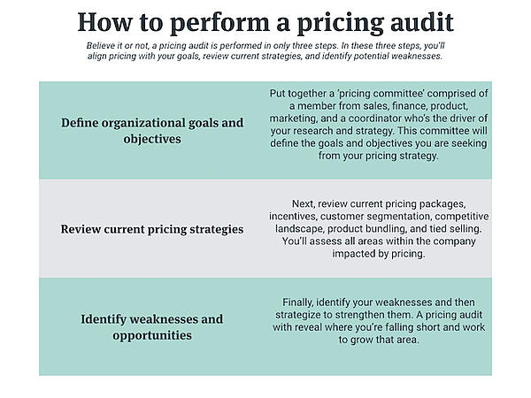 how to perform a pricing audit.001